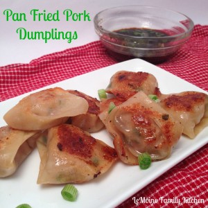 Pan Fried Pork Dumplings | LeMoine Family Kitchen #appetizer #dumpling #pork #asian #horsdoeuvre