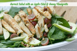 Harvest Salad with an Apple Cider & Honey Vinaigrette | LeMoine Family Kitchen . Hearty & healthy salad perfect for Fall. Baby spinach, apples, grapes, dried cranberries, walnuts, grilled chicken and a simple refreshing dressing.