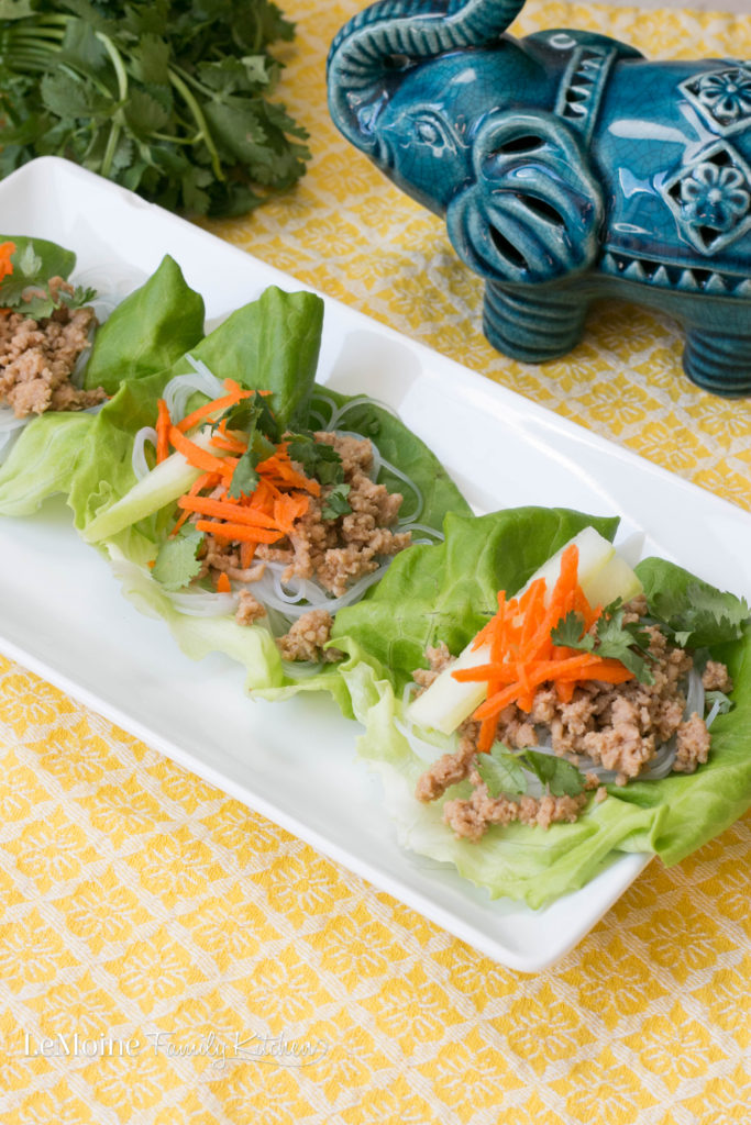 Asian Chicken & Rice Noodle Lettuce Wraps. A delicious, light and healthy summer meal or appetizer! These are SO good!